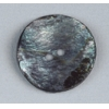 Button Shell Abalone 25mm